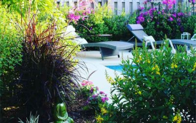 Backyard Design Tips from Custom Home Builder in Huntsville